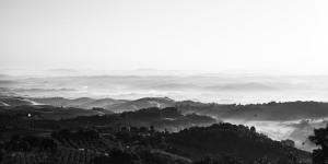 Fine art black and white landscape of Tuscany, near Montaione, Pisa