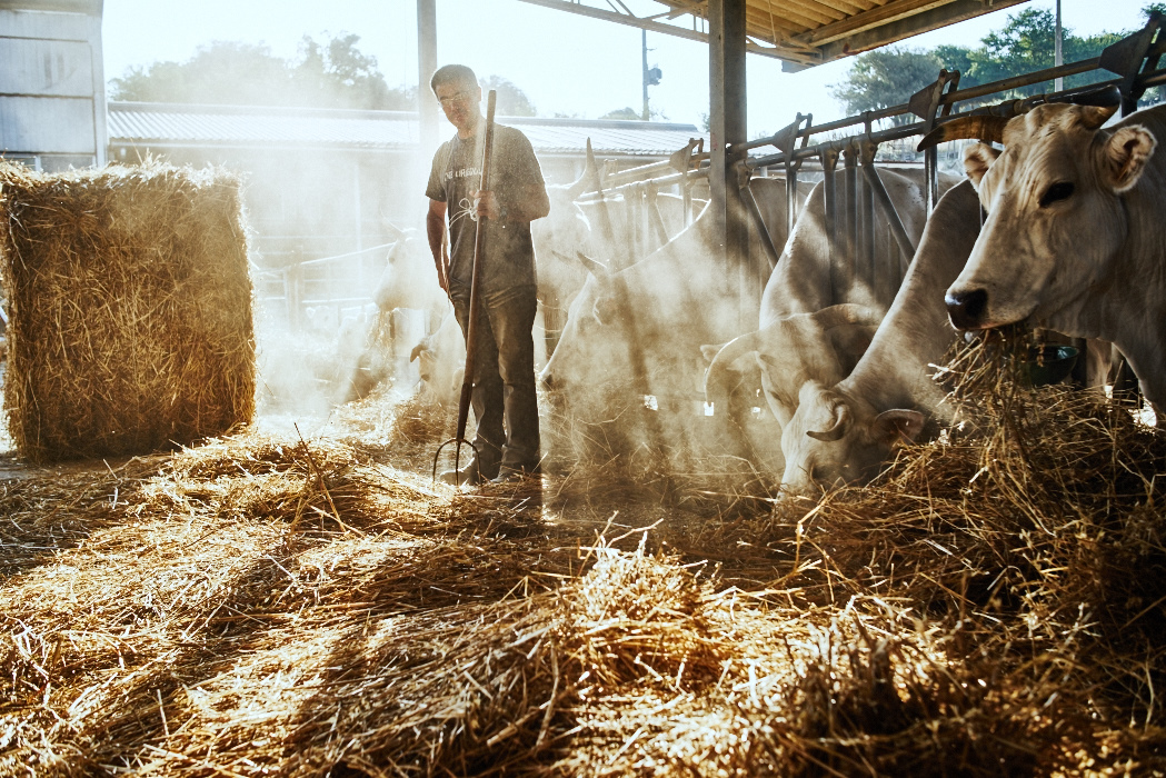 Commercial and fine art photography of farmers in Italy done for a client that sells agricultural material