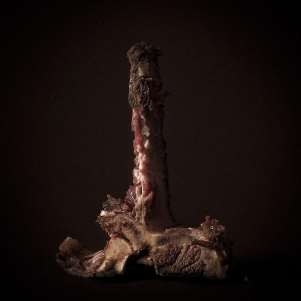 Fine Art Still lifes awarded at Sony world Photography Awards 2011.