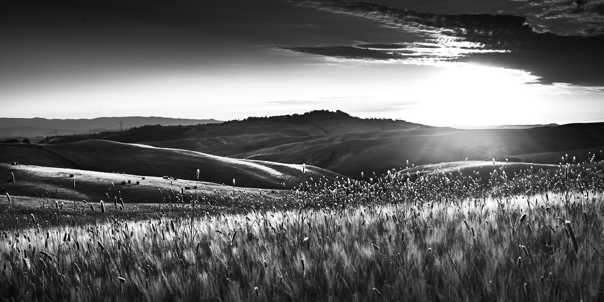 Fine art black and white landscape of Tuscany, near Volterra, Pisa