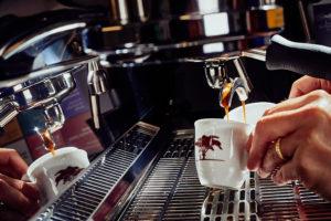 Piantagioni del caffe'